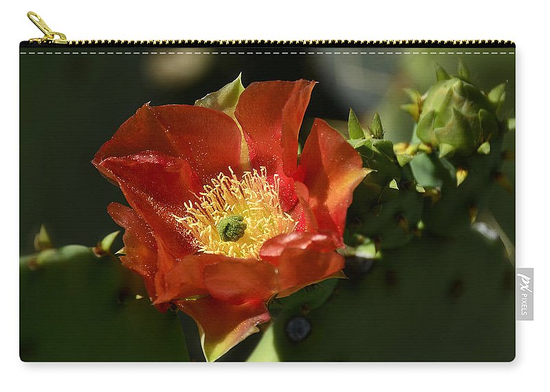 Prickly Pear Cactus Carry-all Pouch featuring the photograph Orange Prickly Pear Blossom by Saija Lehtonen
