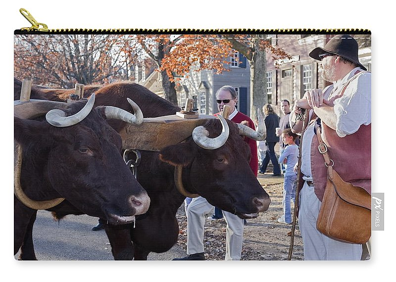 Oxen Carry-all Pouch featuring the photograph Oxen And Handler by Sally Weigand
