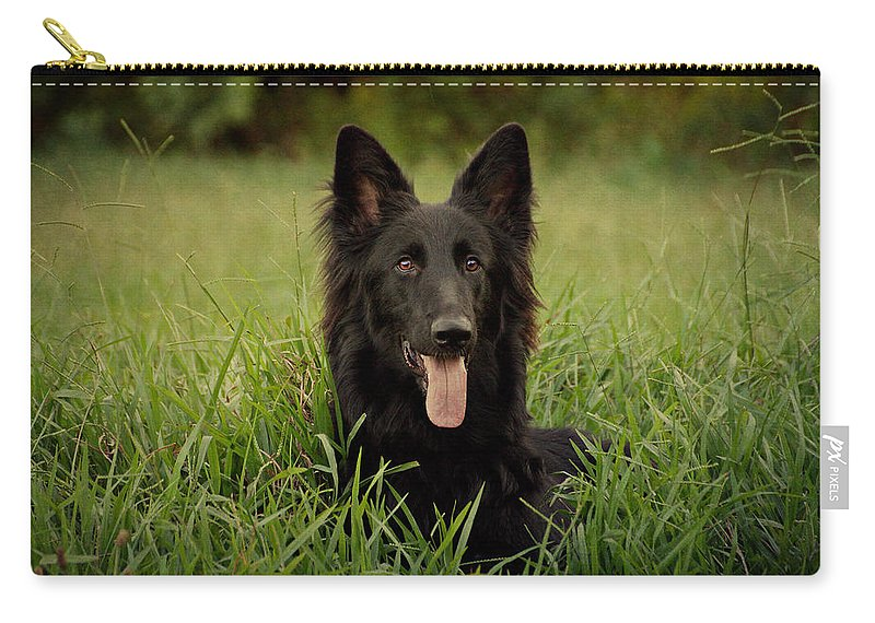 German Shepherd Carry-all Pouch featuring the photograph Phoenix by Sandy Keeton