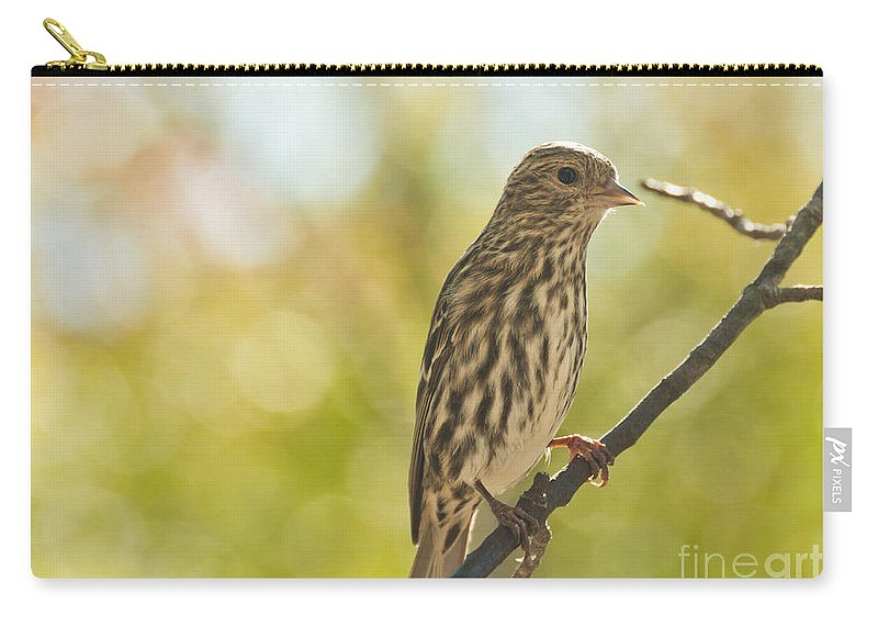 Birds Carry-all Pouch featuring the photograph Pine Siskin by Cheryl Baxter