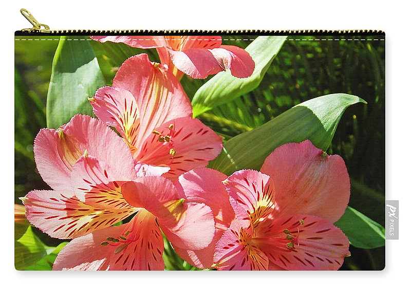Flower Carry-all Pouch featuring the photograph Pink And Green by Aimee L Maher ALM GALLERY