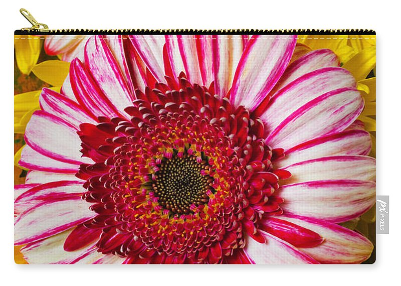 Pink Carry-all Pouch featuring the photograph Pink And Yellow Mums by Garry Gay