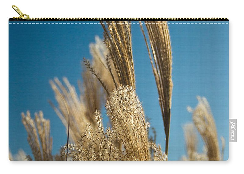 Cortaderia Carry-all Pouch featuring the photograph Pompas Grass 1 by Douglas Barnett