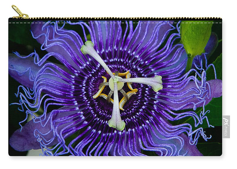 Book Carry-all Pouch featuring the photograph Purple Flower 1 by Sean Wray