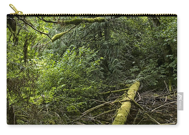 Art Carry-all Pouch featuring the photograph Rain Forest On Vancouver Island by Randall Nyhof