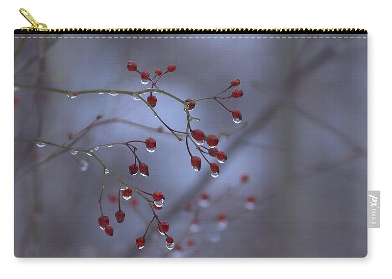 Nature Carry-all Pouch featuring the photograph Silent Morning by Ron Jones