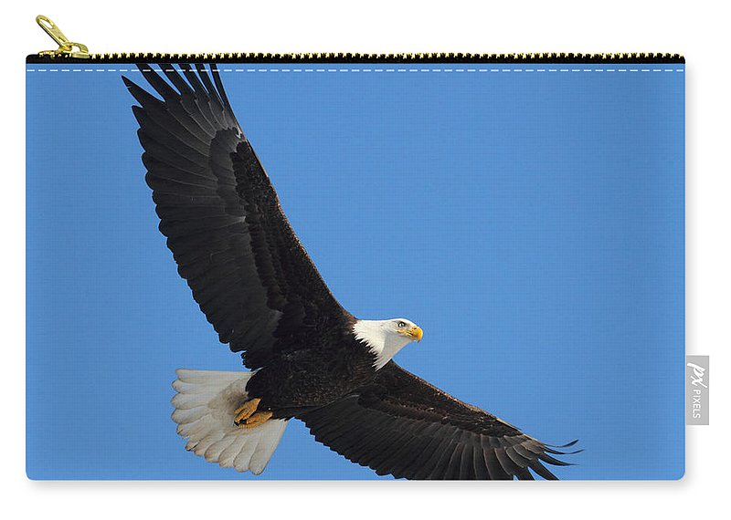 Doug Lloyd Carry-all Pouch featuring the photograph Soaring by Doug Lloyd