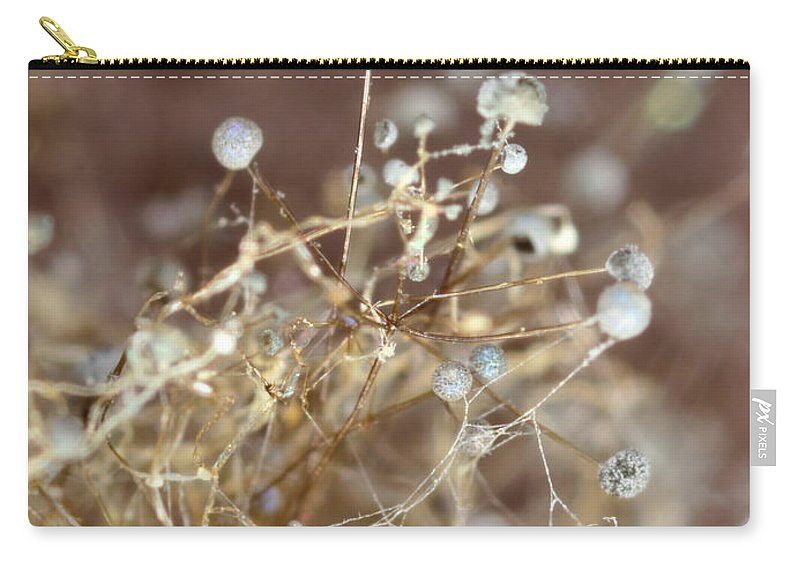 Macro Carry-all Pouch featuring the photograph Spore by Jeffery Ball