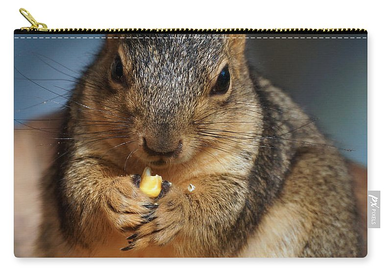 Squirrel Carry-all Pouch featuring the photograph Squirrel Eating Corn by Lori Tordsen