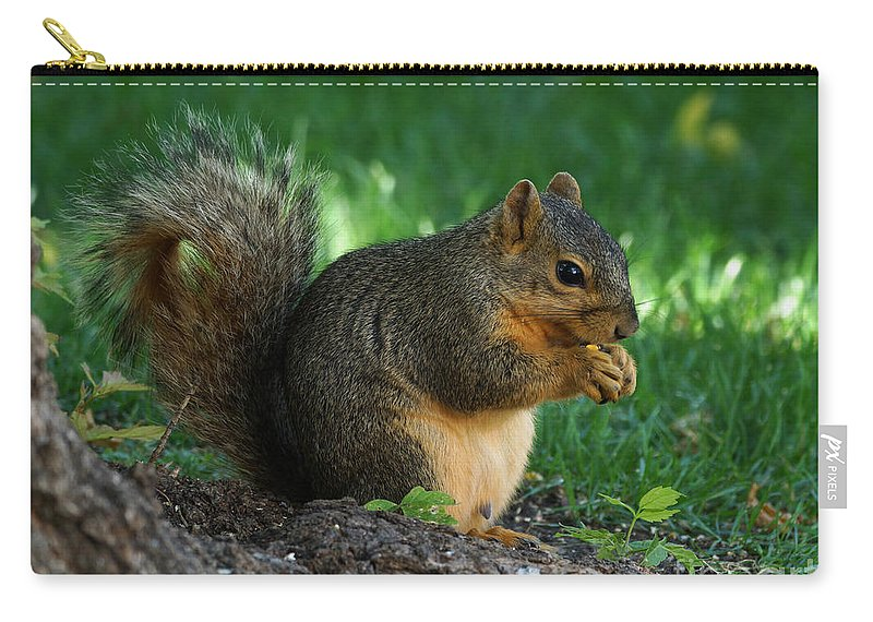 Squirrel Carry-all Pouch featuring the photograph Squirrel Eating by Lori Tordsen