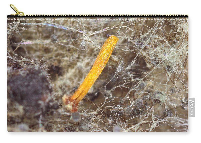 Macro Carry-all Pouch featuring the photograph Stem by Jeffery Ball