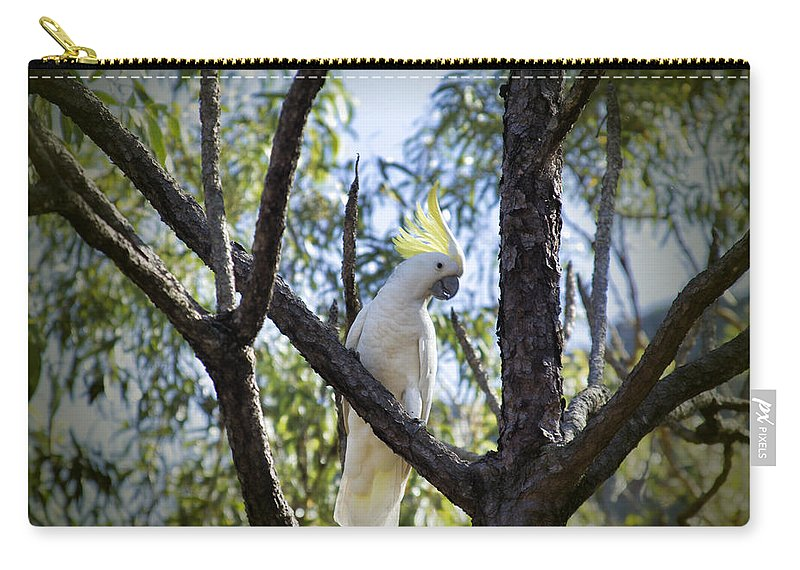 Sulphur Crested Cockatoo Carry-all Pouch featuring the photograph Sulphur Crested Cockatoo by Douglas Barnard