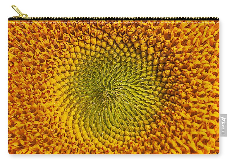 Sunflower Carry-all Pouch featuring the photograph Sunflower Close Up by Garry Gay
