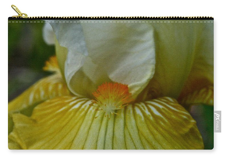 Plant Carry-all Pouch featuring the photograph Sunny Side Up by Susan Herber