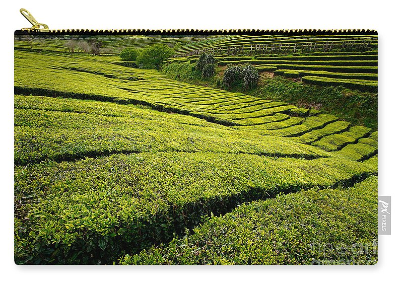 Tea Gardens Carry-all Pouch featuring the photograph Tea Gardens by Gaspar Avila