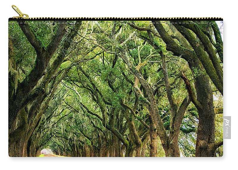 Evergreen Plantation Carry-all Pouch featuring the photograph The Deep South by Steve Harrington