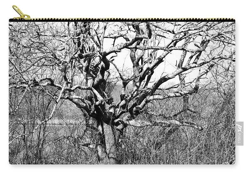Tree Carry-all Pouch featuring the photograph Tree by Steven Natanson