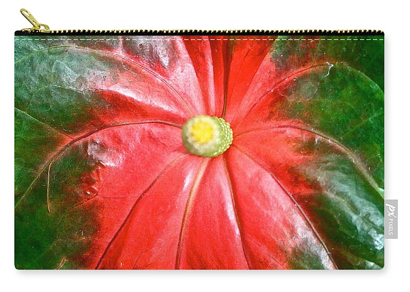 Tropical Plant Carry-all Pouch featuring the photograph Vibrant by Susan Herber