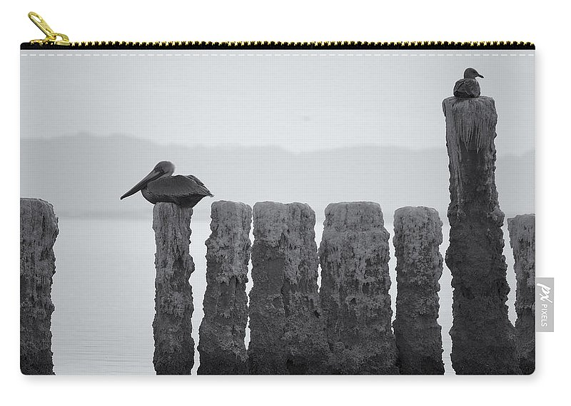 Birds Carry-all Pouch featuring the photograph Waiting For Sunday by Linda Dunn