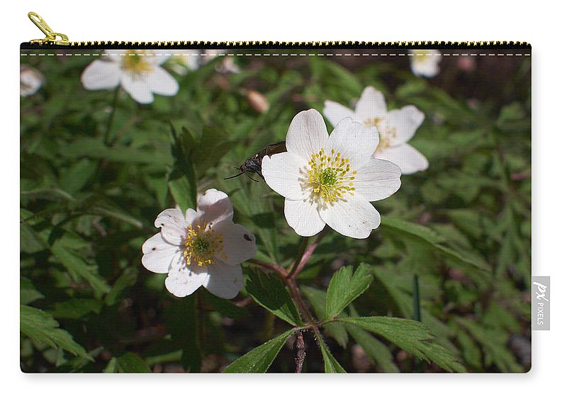 Isosuo Carry-all Pouch featuring the photograph Wood Anemone by Jouko Lehto
