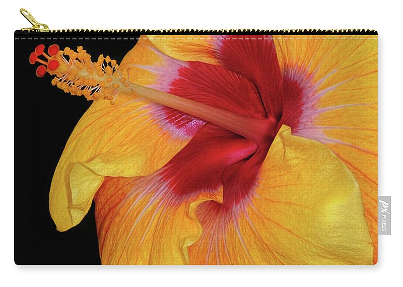 Hibiscus Carry-all Pouch featuring the photograph Yellow Hibiscus by Dave Mills