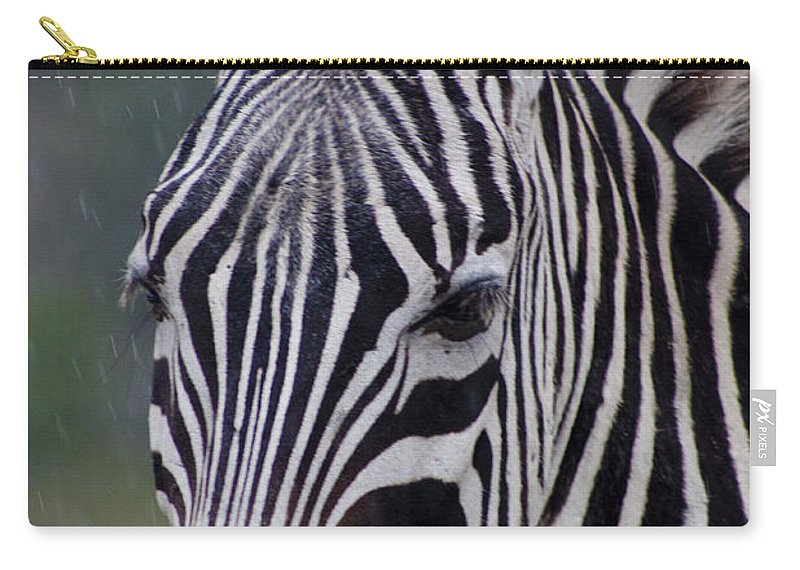 African Carry-all Pouch featuring the photograph Zebra by Thomas Marchessault