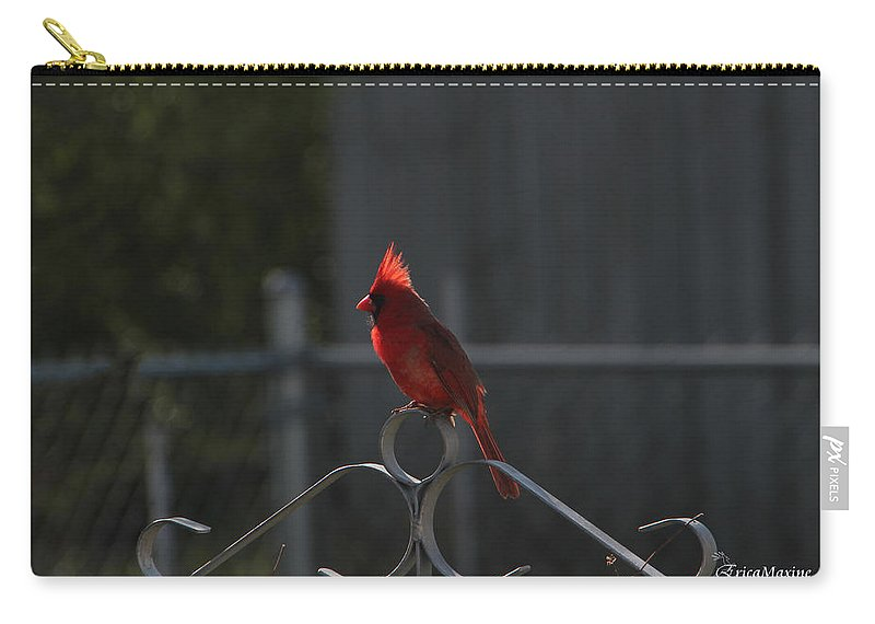 Tn Carry-all Pouch featuring the photograph 1417 Fenced In by Ericamaxine Price