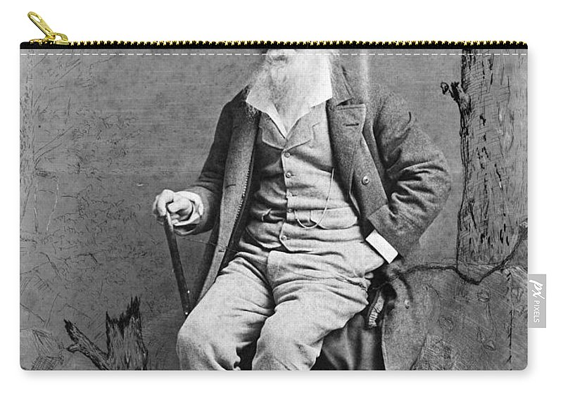 1890 Carry-all Pouch featuring the photograph Walt Whitman (1819-1892) by Granger