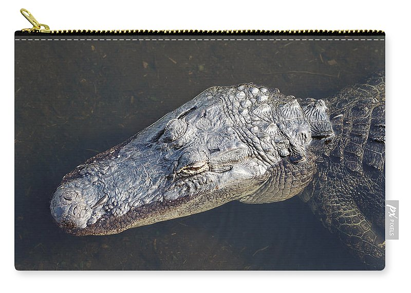 Close-up Carry-all Pouch featuring the photograph American Alligator by Rudy Umans