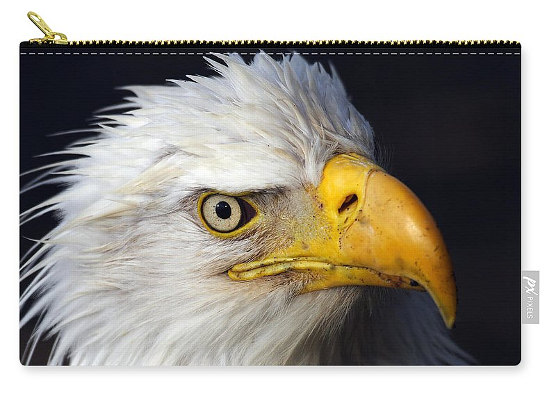 Doug Lloyd Carry-all Pouch featuring the photograph An Eye On You by Doug Lloyd