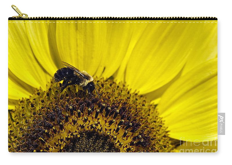 Helianthus Annuus Carry-all Pouch featuring the photograph Bee And Sunflower by John Greim
