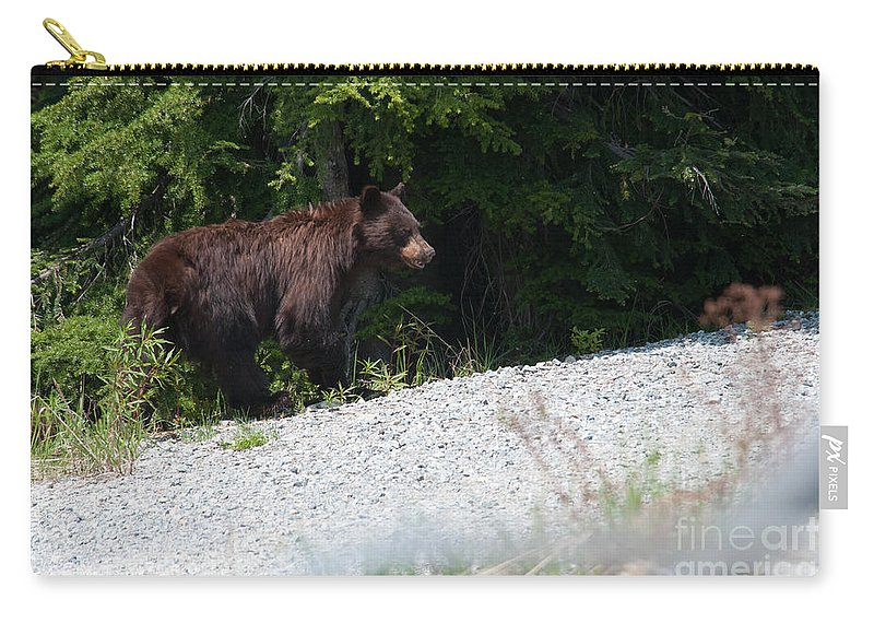 Animals Carry-all Pouch featuring the digital art Black Bear by Carol Ailles