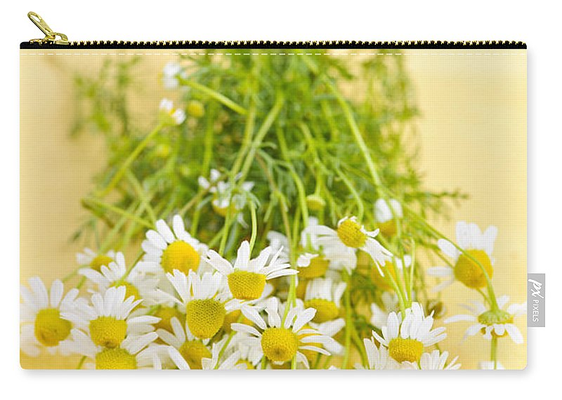 Chamomile Carry-all Pouch featuring the photograph Chamomile Flowers by Elena Elisseeva