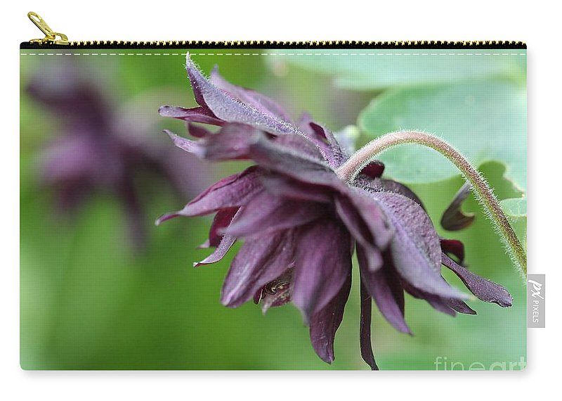 Columbine Carry-all Pouch featuring the photograph Columbine Named Miss Mi Huish by J McCombie