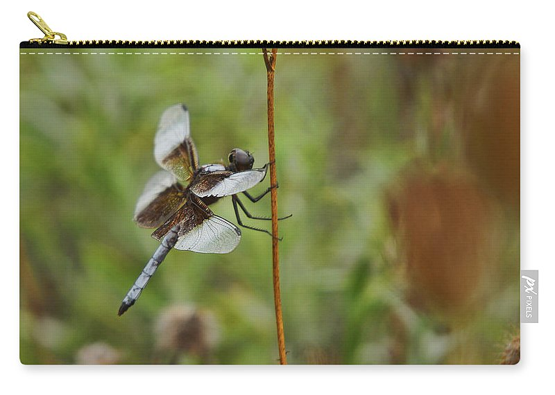 Dragonfly Carry-all Pouch featuring the photograph Dragonfly by Alan Hutchins