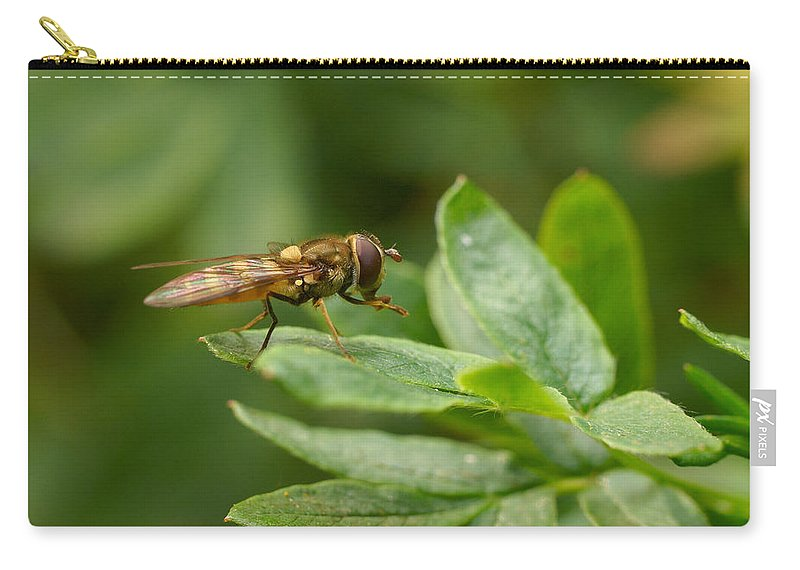 Hoverfly Carry-all Pouch featuring the photograph Hoverfly by Jouko Lehto