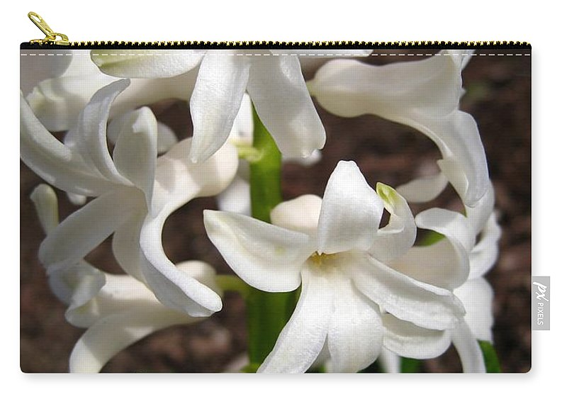 Hyacinth Carry-all Pouch featuring the photograph Hyacinth Named Aiolos by J McCombie
