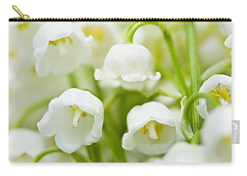 Flower Carry-all Pouch featuring the photograph Lily-of-the-valley Flowers by Elena Elisseeva