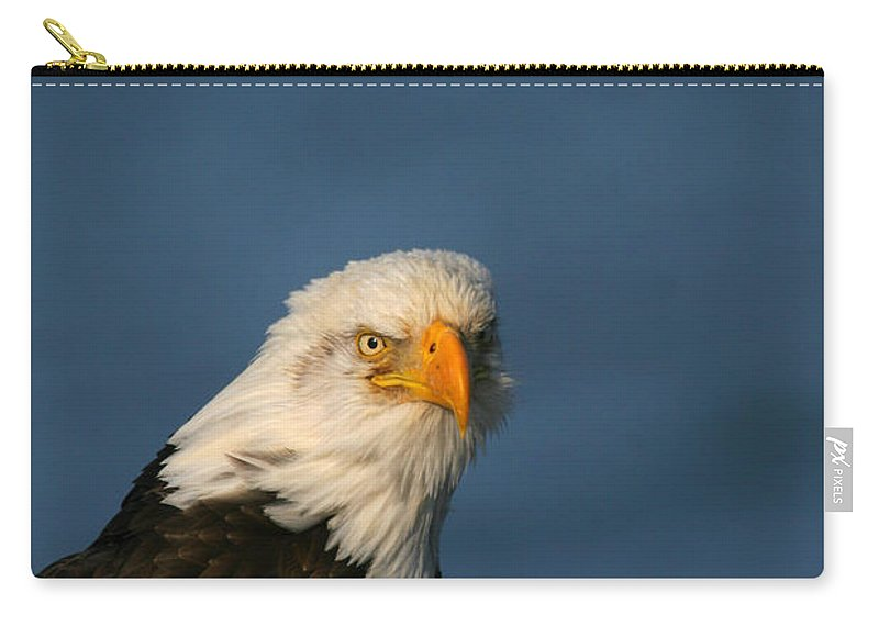 Doug Lloyd Carry-all Pouch featuring the photograph Master by Doug Lloyd