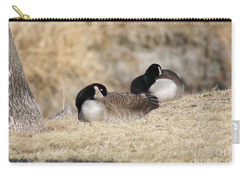 Goose Carry-all Pouch featuring the photograph Nap Time by Lori Tordsen