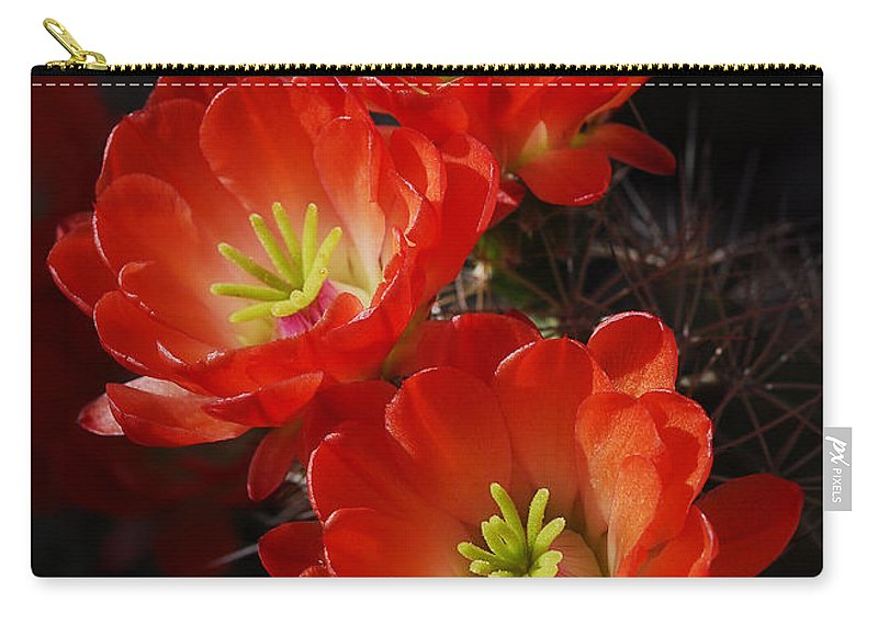 Claret Cup Cactus Carry-all Pouch featuring the photograph Red Hedgehog by Saija Lehtonen