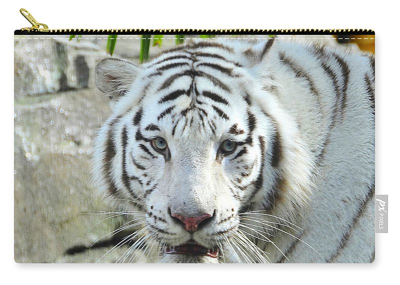 Fine Art Photography Carry-all Pouch featuring the photograph White Tiger by David Lee Thompson