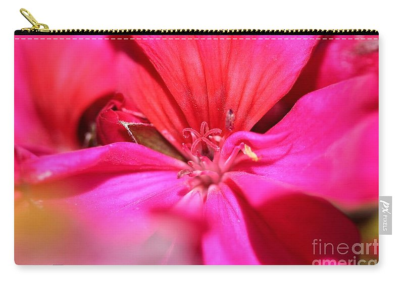 Zonal Geranium Carry-all Pouch featuring the photograph Zonal Geranium Named Tango Neon Purple by J McCombie