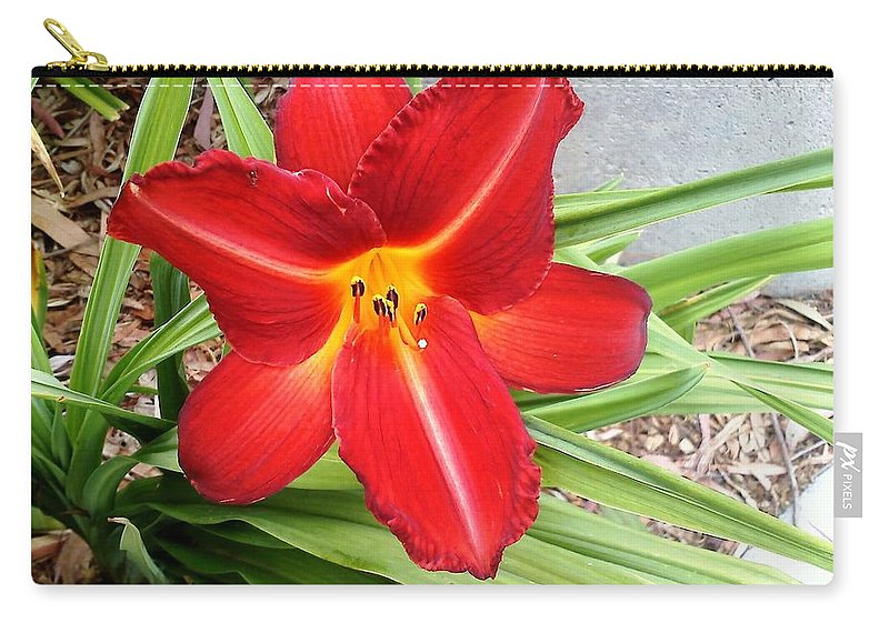 Red Flower Carry-all Pouch featuring the photograph Flower by Leslye Miller