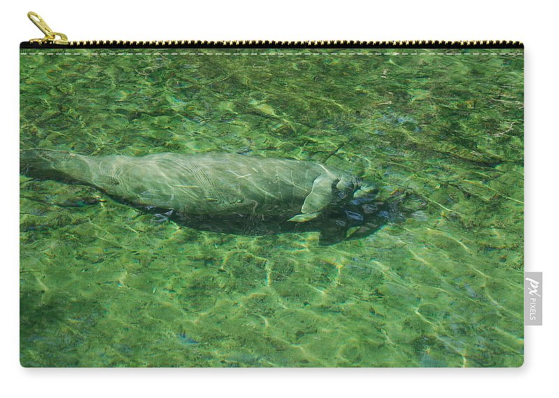 Manatee Carry-all Pouch featuring the photograph Manatee by Randy J Heath