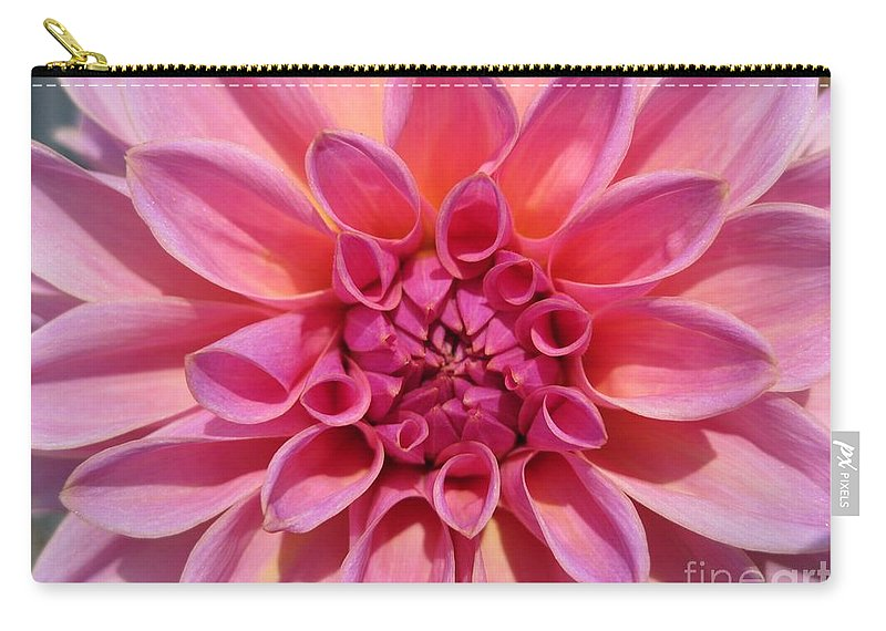 Dahlia Carry-all Pouch featuring the photograph Dahlia Named Lucky Number by J McCombie