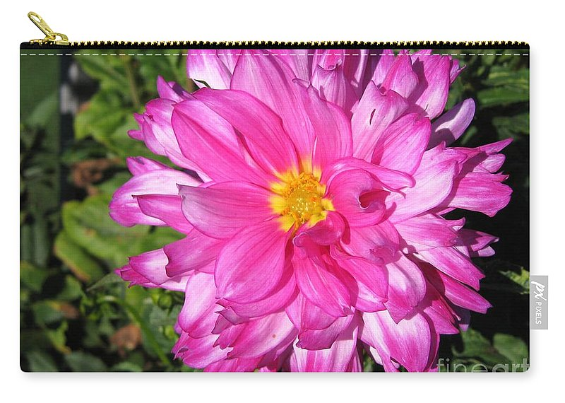Dahlia Carry-all Pouch featuring the photograph Dahlia Named Who Dun It by J McCombie