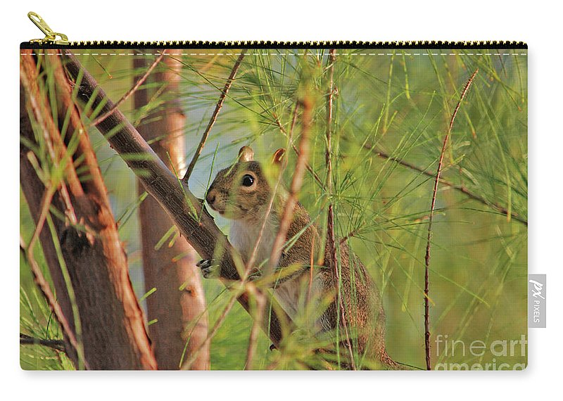 Squirrels Carry-all Pouch featuring the photograph 4- Incognito by Joseph Keane