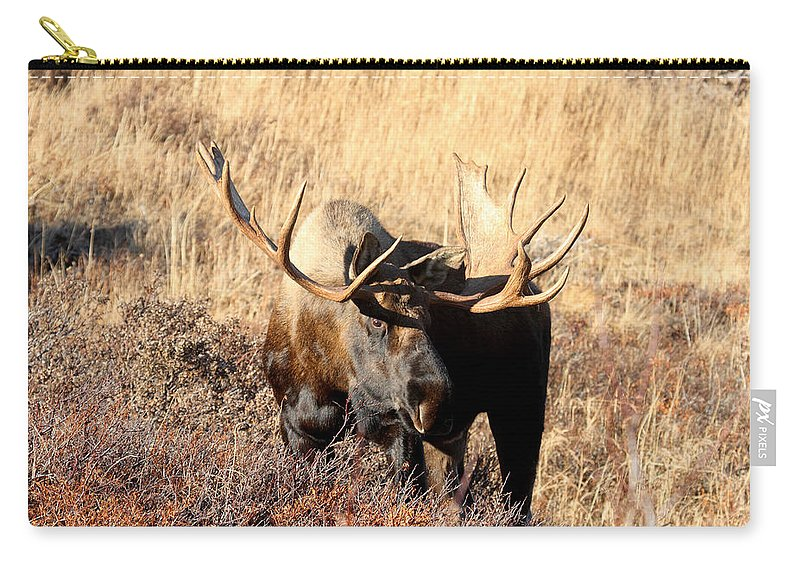 Doug Lloyd Carry-all Pouch featuring the photograph Big Boy by Doug Lloyd