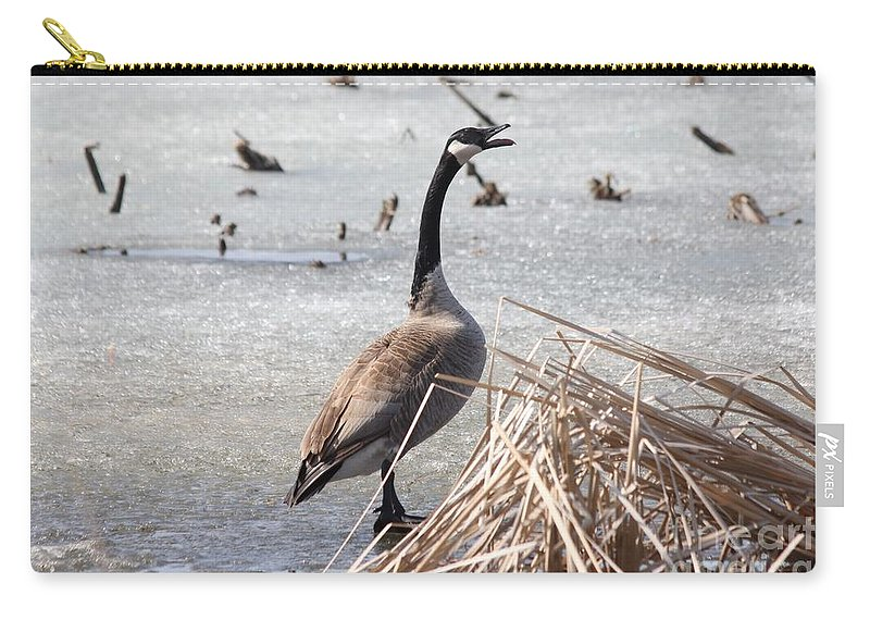 Goose Carry-all Pouch featuring the photograph Goose by Lori Tordsen